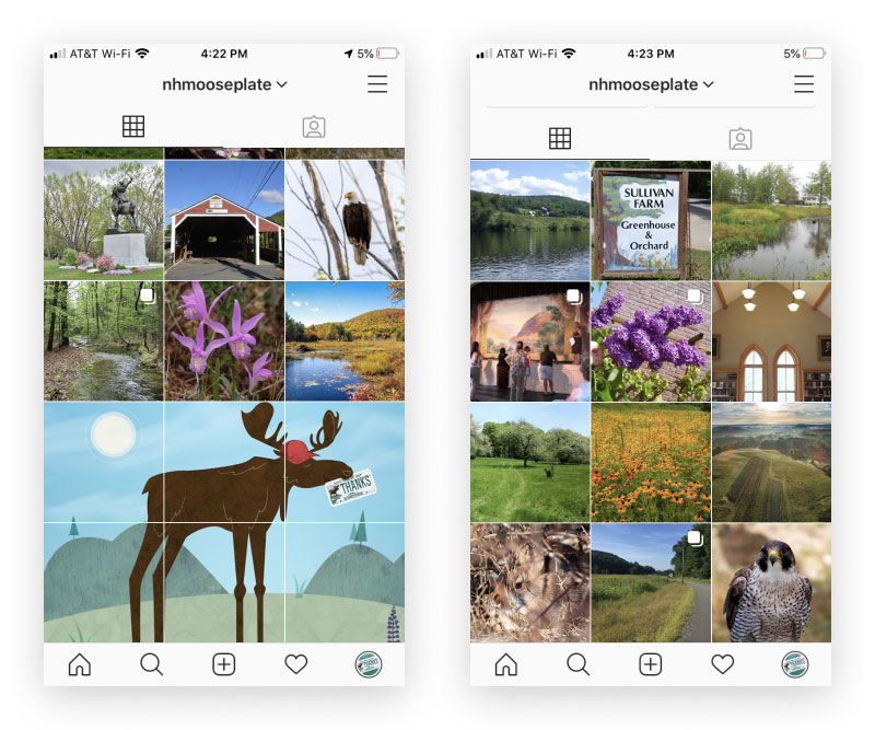Instagram populate your grid