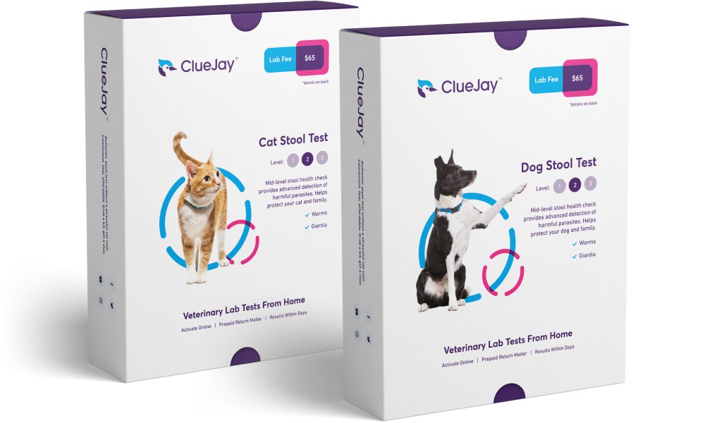 ClueJay boxes