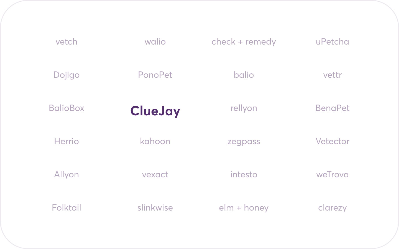 ClueJay naming