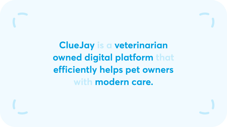 ClueJay verbal branding